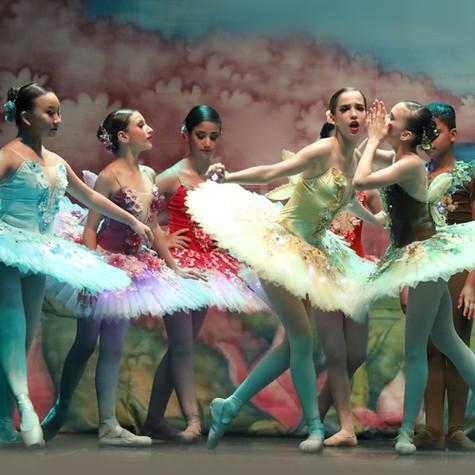 002-Ballet Karina Rezende - Magia das Fa