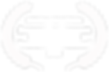 OFFICIALSELECTION-EvansvilleMuseumIntern