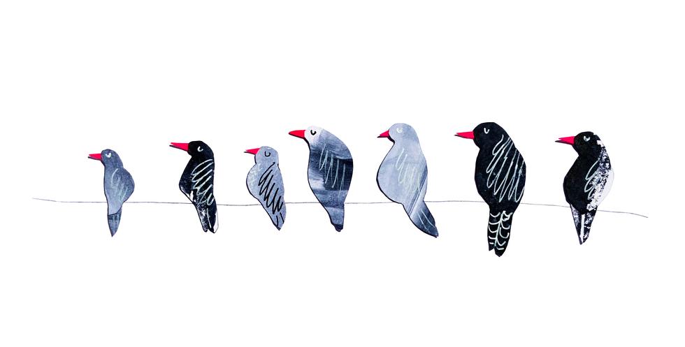 birds copy.png