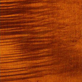 Amber Transparent Satin Maple