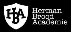 Herman_Brood_Academie