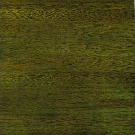 Emeraude Green Transparent Satin Mahogan