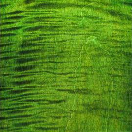 Emeraude Green Transparent Satin Ash