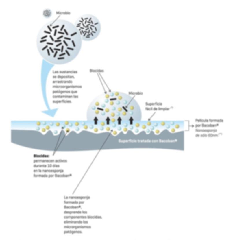 Bacoban, microbio, biocidas, eco07, bini