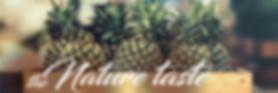 rafi_banner4[1].jpg