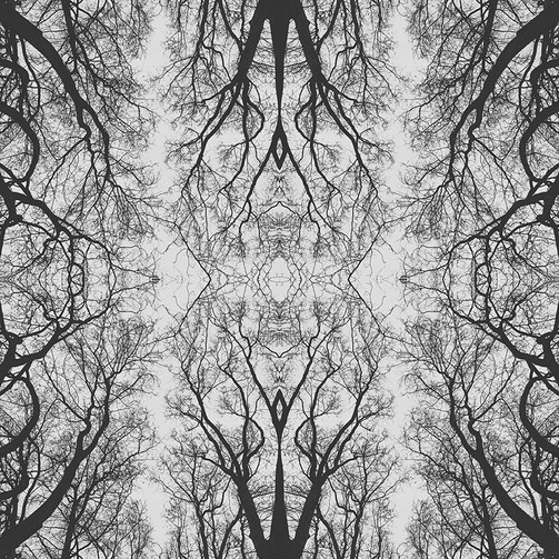 geometree XXXII