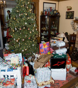 The Silly Season Bonanza and Tips for more than Mere Survival