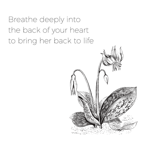 breathe deepinto thebackof your heart.pn