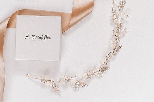 Bridal vine - Jada