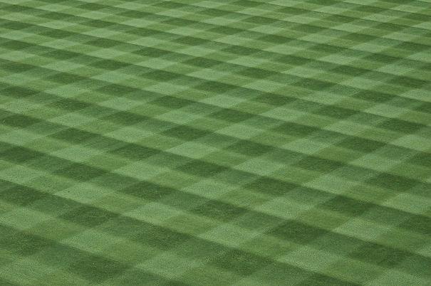 baseball-field-1548348_1920.jpg