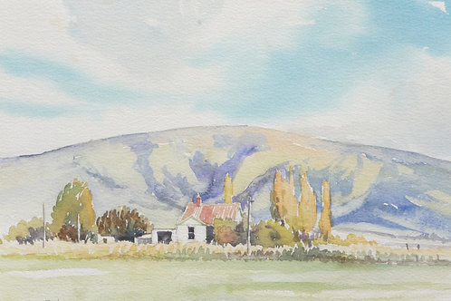 South Island countryside, 1989