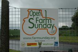 FARM-SUNDAY-001.png