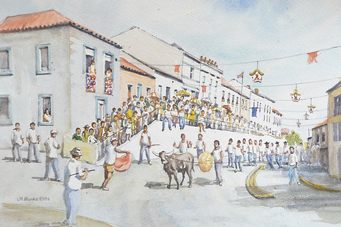 Street Bullfight on Terceira Island