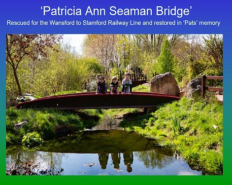 Patricia Ann Seaman Bridge 11.png