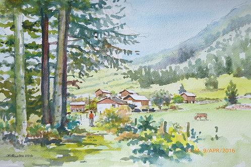 Vallorcine near Chamonix, 2016
