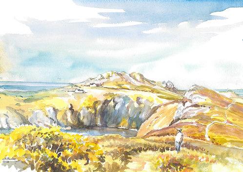 Pwll Deri YH from cliff path, Pembrokeshire, 2010