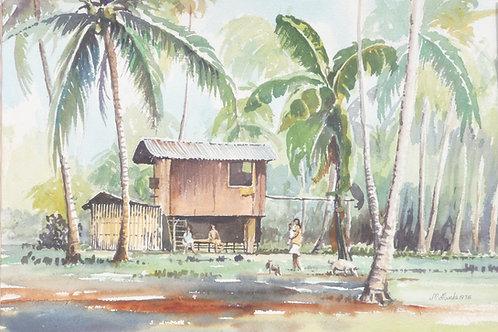 Coconut Plantation near San Pablo, 1978
