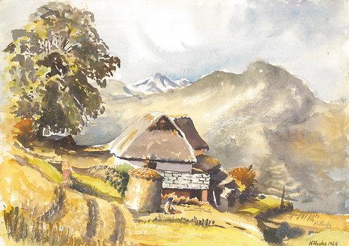 Farm above Helambu Valley, 1968