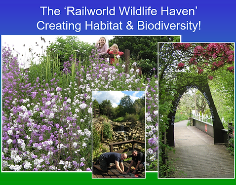 Wildlife haven with flowers .png