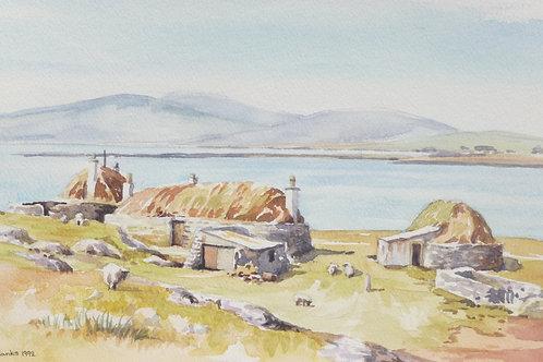 Old farm on the Isle of Berneray, 1992