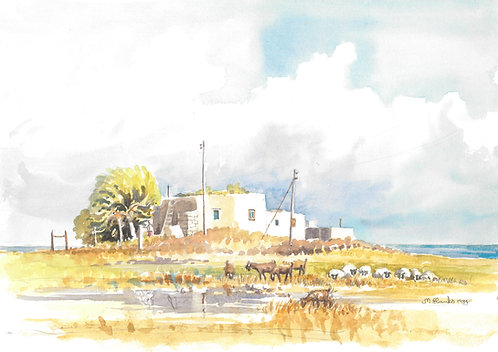 Coastal scene near Pathos, 1984