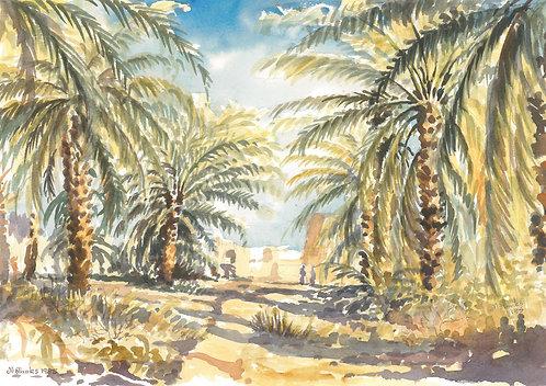 Old farm at Riyadh, 1985