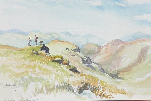 Lining Crag, 1999