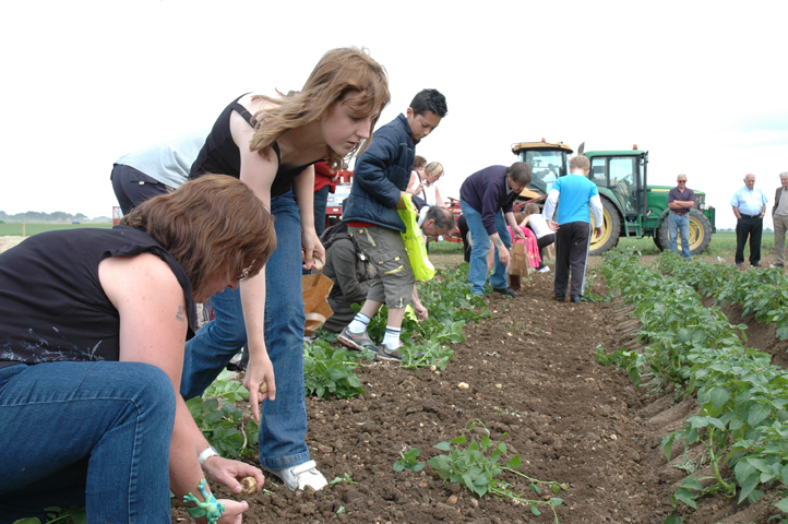 Farm-Sunday-2010-293.png