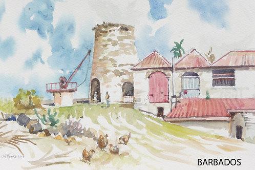 The St Nicholas Abbey Sugar Mill, 2003