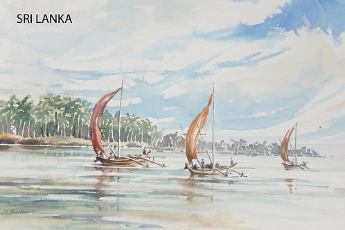 Fishing boats near Negombo, 1979