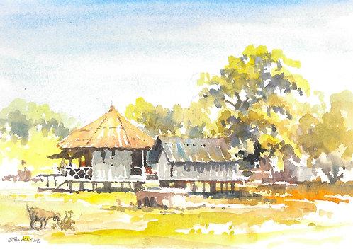 Farm in Sundarbans, 2015