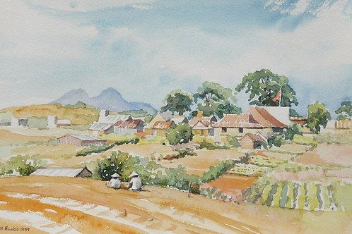 Country scene near Dalat, 1999