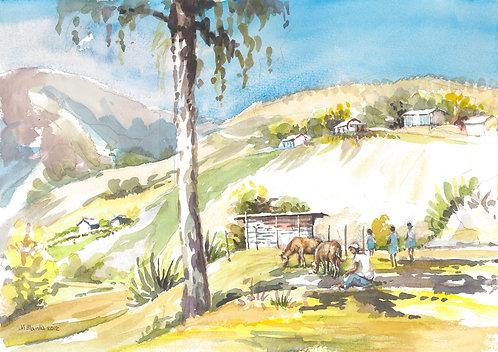 Mountains near Constanza, 2012