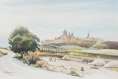 Mdina old capital, 1984