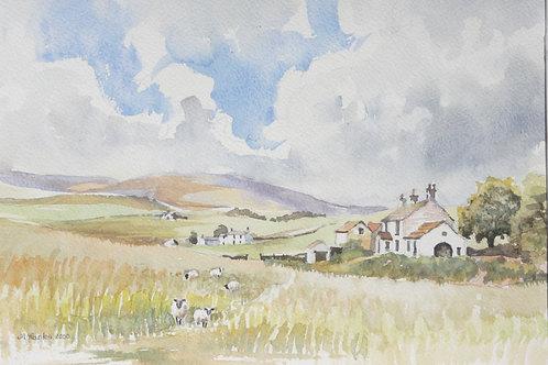 Rural farm in Langdon Beck