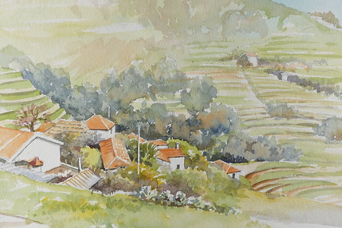 Terraced hills near Camacha, 1995