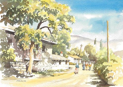 Country lane near Denizli, 1986