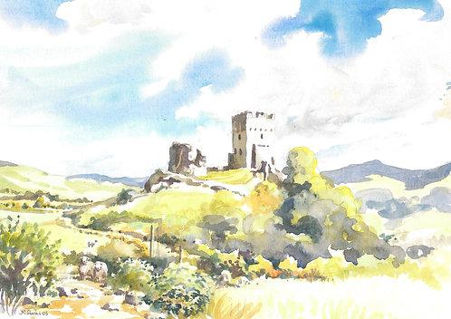 Dolwyddelan Castle, Snowdonia, 2006
