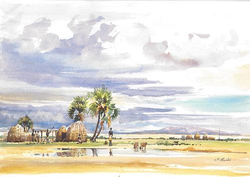 Lake Turkana after the rain, 1977