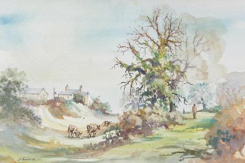 Beetham countryside, 2006