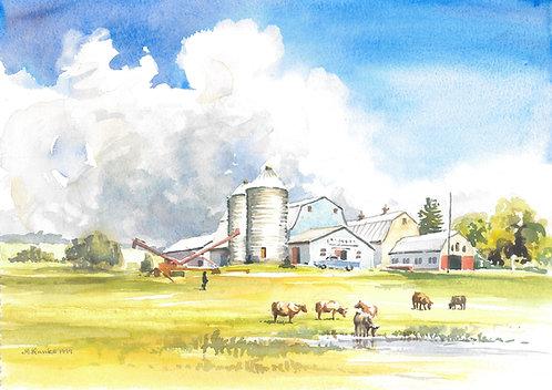 Typical farm on Prince Edward Island, 1999