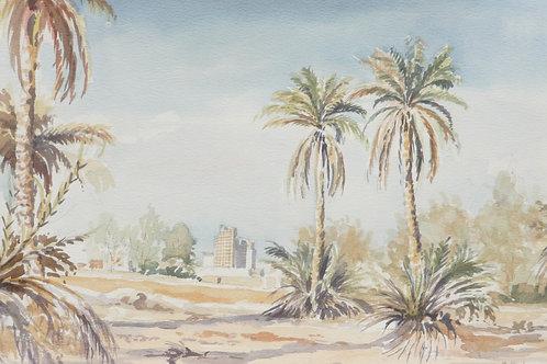 Abandoned farm near Riyadh, 1984