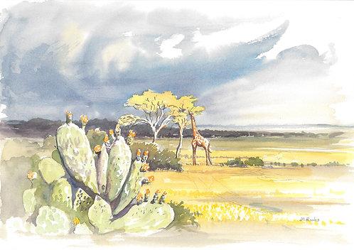 Maasai Mara National Reserve (A), 1977