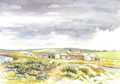 Farm on Papa Westray, Orkney's, 1994