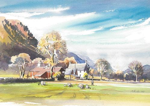 Farm near Betws-y-coed, Snowdonia NP, 1980