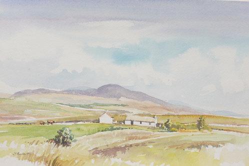 County Leitrim, 1991