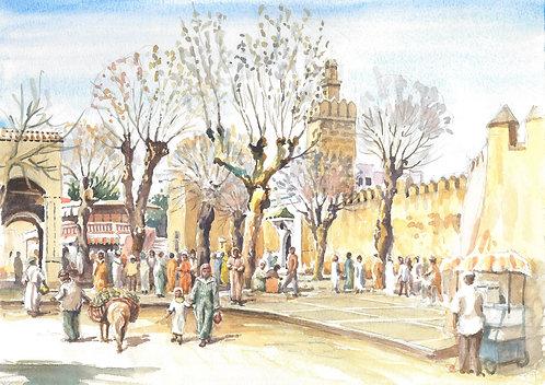 Street market in Sefrou (A), 2006