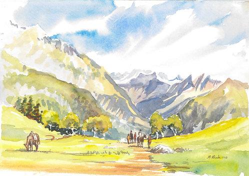 Track into hills above Sonmarg, Kashmir