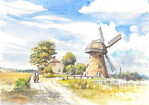 Windmill near Araisi, 1998