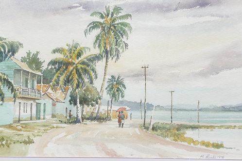 Flores Island, 1976